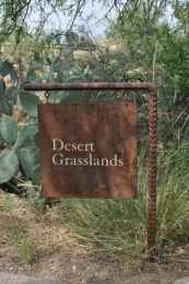 Desert Grasslands at Arizona-Sonora Desert Museum