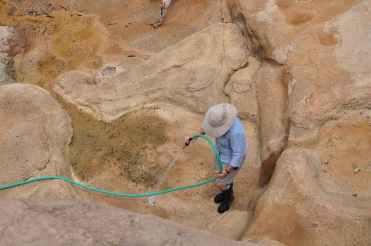 rock cleaning at Arizona-Sonora Desert Museum