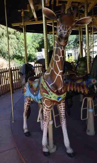 giraffe carousel Reid Park Zoo