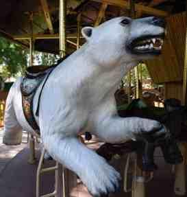 polar bear Reid Park Zoo