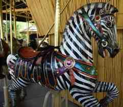 zebra carousel Reid Park Zoo