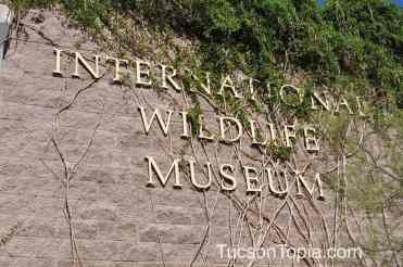 International Wildlife Museum in Tucson