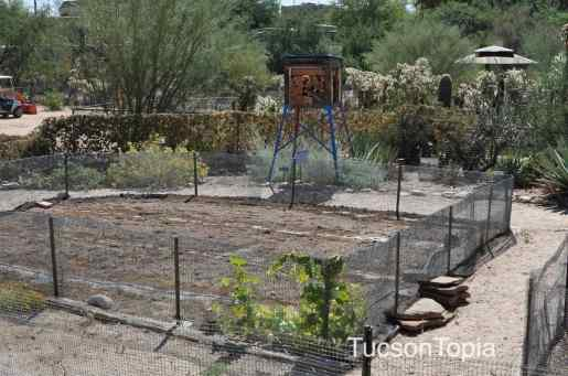 one of the gardens at Tohono Chul Park