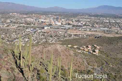 You can see Downtown Tucson from Tumamoc Hill