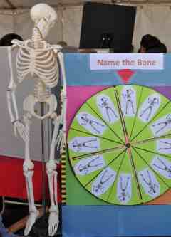 Name The Bone Tucson Festival of Books