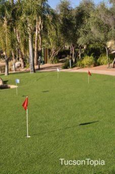greens at Hilton Tucson El Conquistador