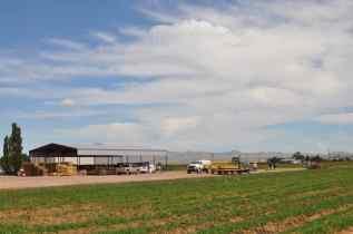 Apple Annie's farm in Willcox