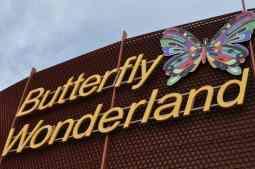 Butterfly Wonderland AZ