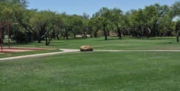 lush lawns at Tucson Country Club