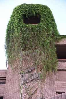 Rapunzel's Tower at Loews Ventana Canyon Resort