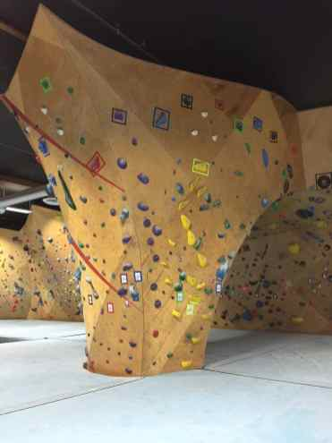 climbing wall at the bloc