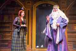 Henry Porter at The Gaslight Theatre