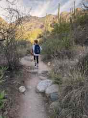 Young Hiker on Ventana Canyon Trail