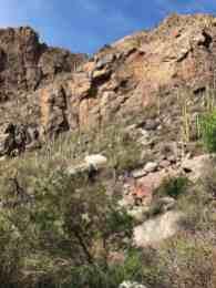 mountainside Ventana Canyon Tucson