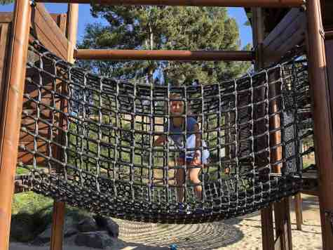 Net Bridge Adventure Playground
