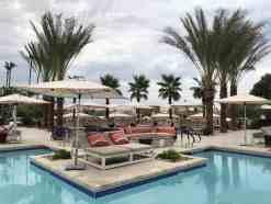 Phoenician Pool Loungers