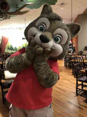 Wiley Character Breakfast Great Wolf Lodge