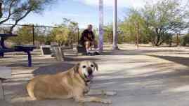 off leash dog Purple Heart Park