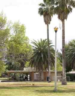 palm trees ramada La Madera Park