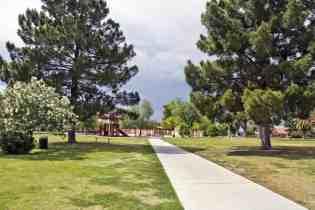 trees sidewalk Catalina Park