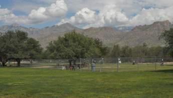 mountains grass McDonald Park Tucson
