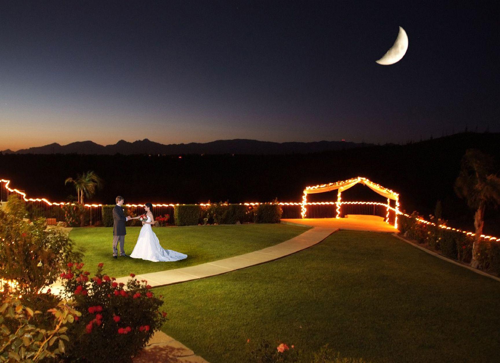 services my tucson wedding
