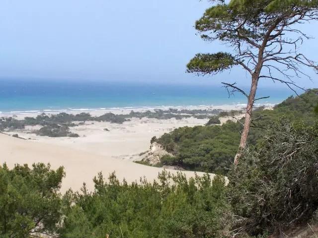 Blick auf das den Sand am Patara Strand und das Meer im Hintergrund