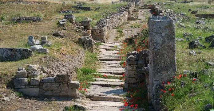 Mit Steinen gepflasterter und mit einer einen Meter hohen Mauer umfasster Weg durch die Ruinen von Hierapolis. Am Weg wachsen ein paar Rote Blumen.