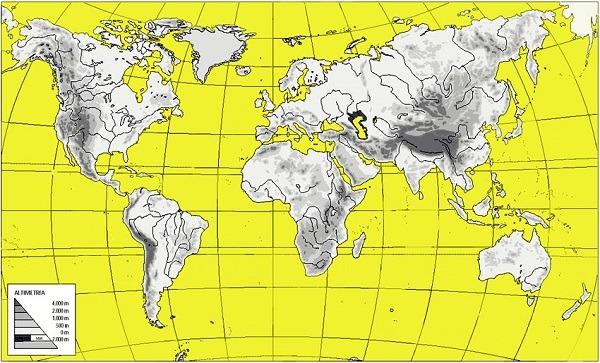 Mapas del mundo(planeta) mudos