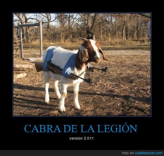 CR_170532_8e015f887aaf421da1e71893798e6588_cabra_de_la_legion