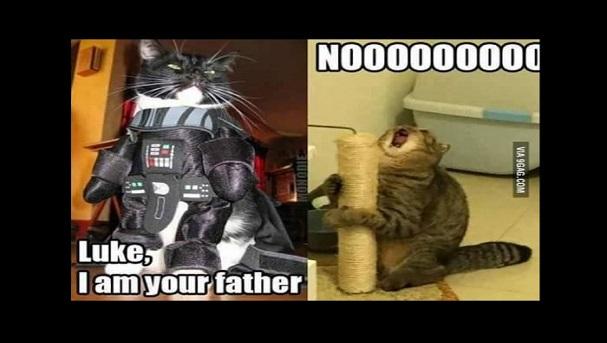 meme dia del padre 03
