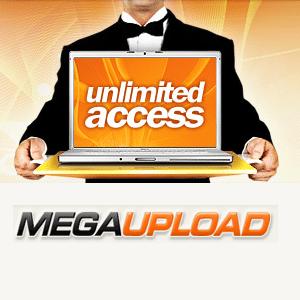 Ficheiros dos antigos servidores do Megaupload definitivamente apagados