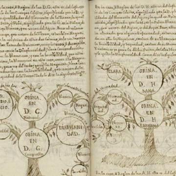 Manuscrito de medicina Liliana escrito por Juan de Santa Gertrudis, siglo XVIIl, autor también de un libro de viajes por Colombia. Cortesía de la Biblioteca Nacional de España