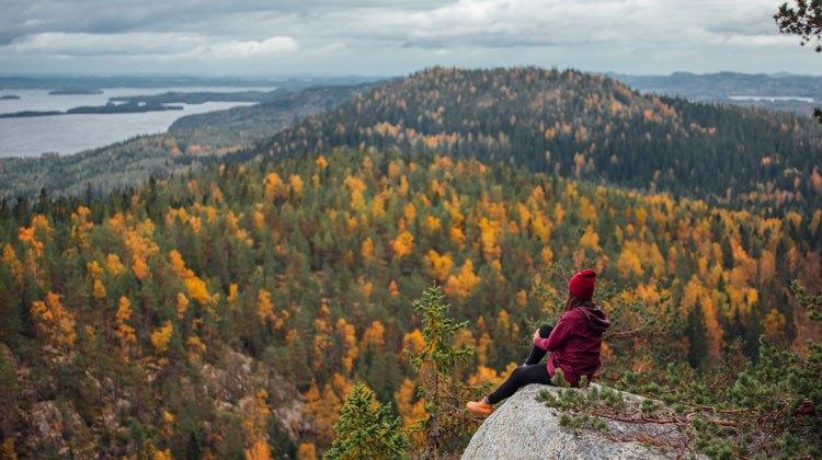 Parque Nacional Koli, Finlandia. Tu Gran Viaje
