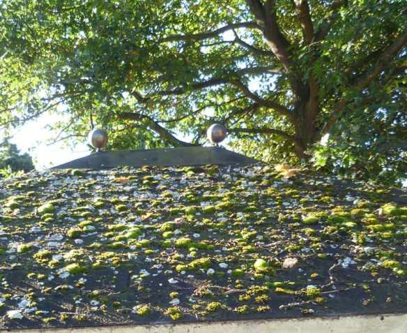 An old log cabin shingled roof