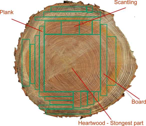 Cuts you could possibly apply to a log