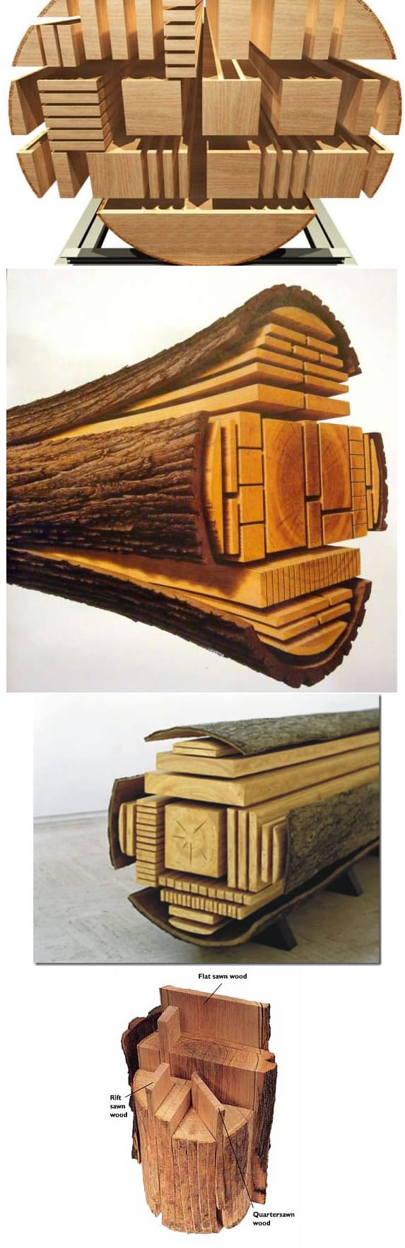 Various types of cuts available from a log