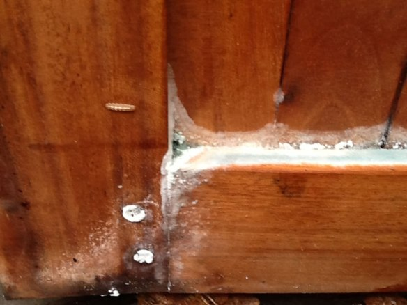 Insect attack in a piece of hardwood furniture. This needs immediate and proper cleaning to prevent damage