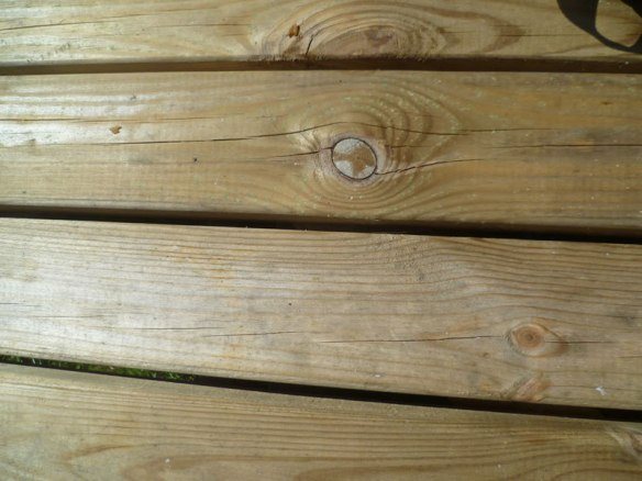Pressure treated picnic table surface. This would benefit from a good timber treatment.