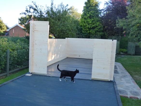 log-cabin-build-2