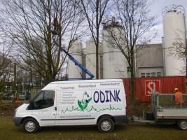 Hoveniersbedrijf Odink Bomen Zagen-2