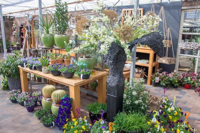 Tuincentrum-bloemsierkunst-odink-cadeauartikelen-kadoartikelen-8