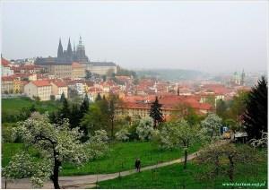 Praga, wieża Petrzyn