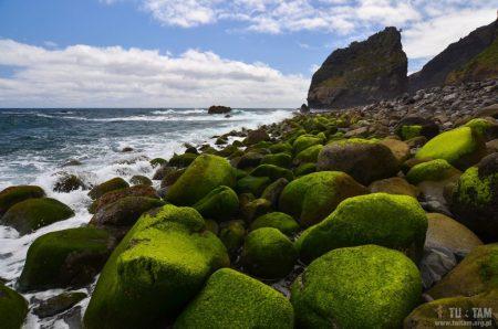 Madera, Madeira, teleferico Santana, kolejka linowa z klifu