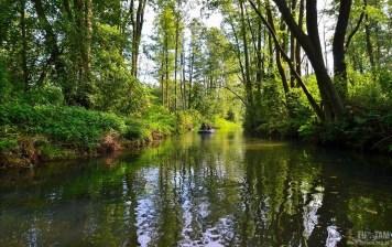 Spływ rzeką Białką