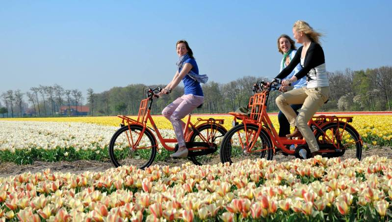 bicycle route keukenhof flower fields