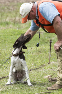 Pro dog trainer Tom Woods introduces himself to a young German Shorthair Pointer at the 2013 TBDA Training Day.