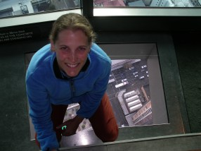 High Atop the Auckland Needle
