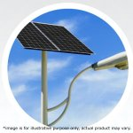 Loom Solar 30Watt Street Light