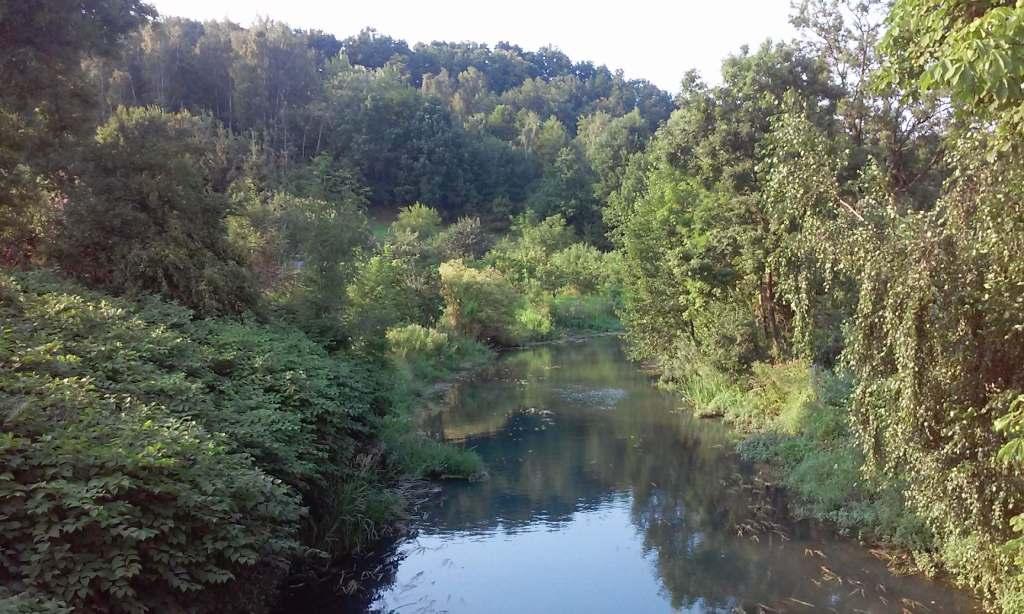 Lagoon-Koronowski-Brda-Fluss-Bay-Polen-slow-slow-down-Kajak-Kuyavia-Pomerania-Tiefland-Tiefland-Tiefland-Fluss-mountain-Berg-schoen-Wald.jpg